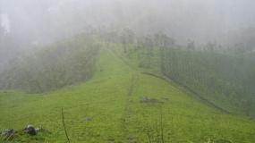 Hill near Munnar town