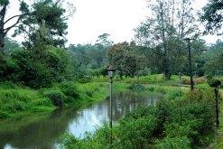 Blossom Park, Munnar