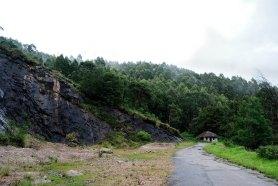 Private estate near Munnar