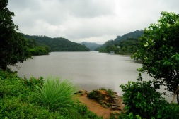 A River on the way from Cochin to Munnar