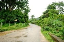 Road near Munnar
