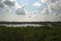 Chithalapakkam, Chennai