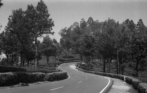 Road from Valparai to Aliyar