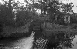 Aliyar river